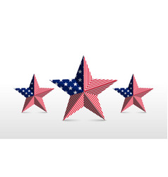 star element flag vector image vector image