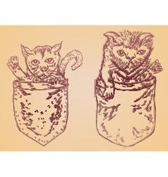 Pocket Kitten vector image vector image
