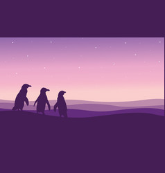 Silhouette of penguin on the hill scenery vector