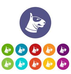 bull terrier dog set icons vector image