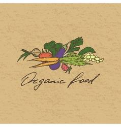 Organic food badge vector image