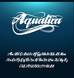 aquatica calligraphic handwritten alphabetical vector image