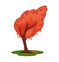 Bowed tree with red leaves isolated on white vector