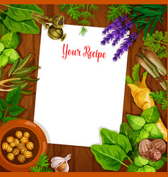 herbs and spices with blank recipe page vector image