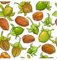 Jojoba nuts pattern on white background vector