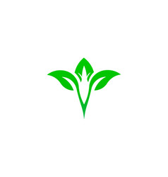 leaf green natural logo vector image