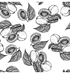Seamless monochrome pattern apricots vector image
