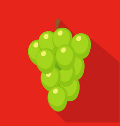 Grapes flat icon vector