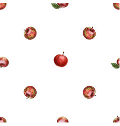 hand drawn red apple pattern vector image