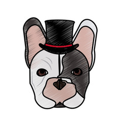 isolated hipster french bulldog design vector image