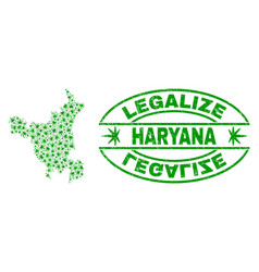 Marijuana leaves mosaic haryana state map with vector