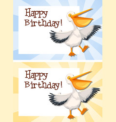 set of pelican on birthday template vector image