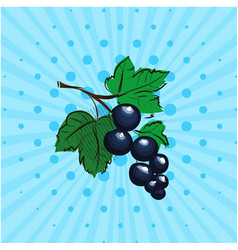 black currant on a blue background lines dots vector image vector image