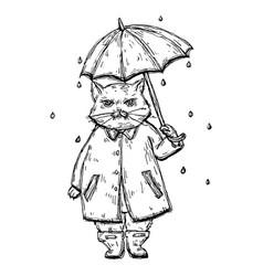 disgrunled cat in raincoat under umbrella in vector image