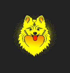 Image of a yellow dog pomeranian dog head vector