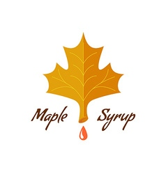 Maple syrup sign Logo with leaf drop and text vector