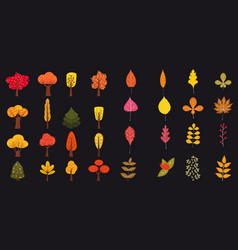 set of cute colorful autumn leaves and berries vector image