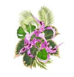 tropical flowers floral arrangement vector image