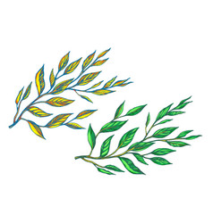 two branches with leaves vector image