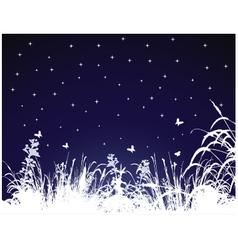 summer night vector image vector image