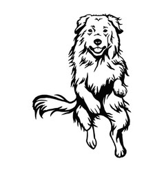 Great pyrenees dog - isolated vector