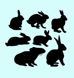 Rabbit pet animal action silhouette vector