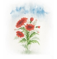 Red poppy on meadow vector image vector image