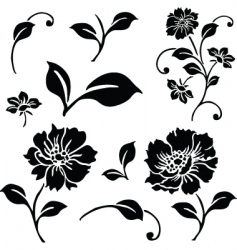 vector daisy and floral ornaments vector image