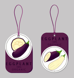 Vegetable purple eggplant vector