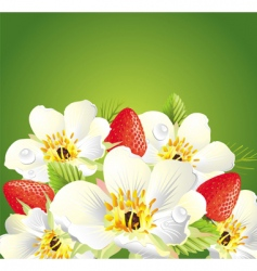 strawberry love card vector image