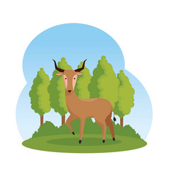 African antelope in the savannah character vector