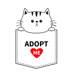 cute cat in pocket holding hands paws adopt vector image