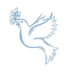 Dove Hand drawn Dove of Peace vector image