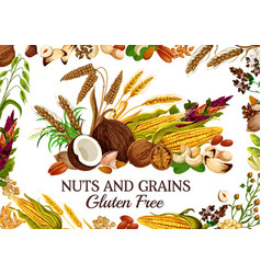 Kernels and seeds cereal food nuts and grains vector