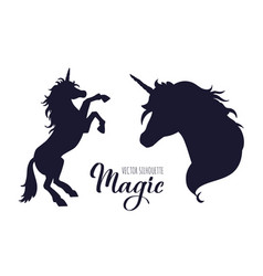 magic unicorn silhouette collection hand vector image