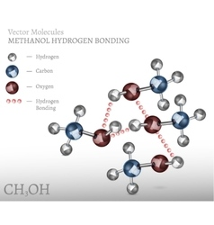 Methanol Molecule Bonding vector