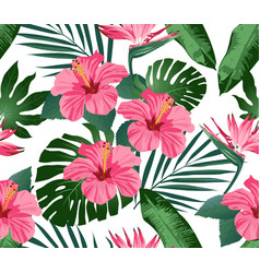 Tropical flowers and leaves on background vector