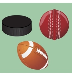 Set of sport equipment vector image vector image