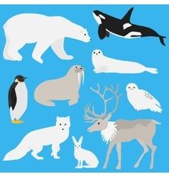 Arctic animals collection three vector image