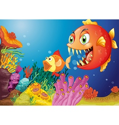 Colorful coral reefs with two fishes vector image