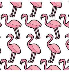 flamingo bird tropical pattern image vector image