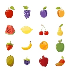 juicy fruits collection isolated over white vector image