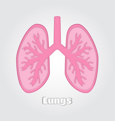 paper cut lungs internal organ papercut vector image