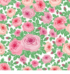 Pattern of roses vector image