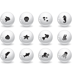 Web buttons ocean life icons vector image