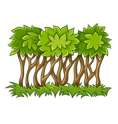 Bush with green leaves on vector image