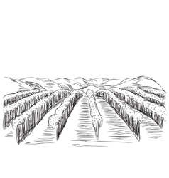 Hand Drawn Landscape with Fields vector image