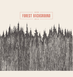 pine forest background drawn sketch vector image vector image