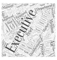 An Executive Resume Should Be Short Precise And vector image