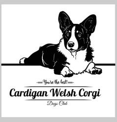 Cardigan welsh corgi dog - for vector